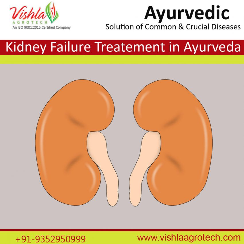 Kidney failure treatnent in ayurveda