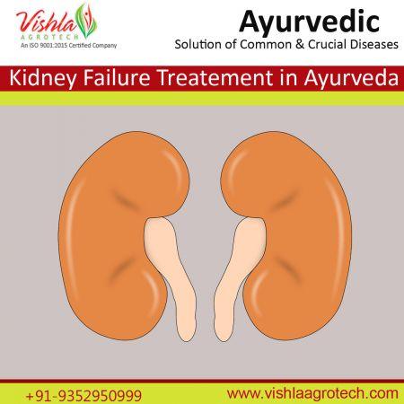 Kidney failure treatnent in ayurveda